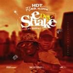 HDT Ft. Flava & Sloppie - E Dey Shake