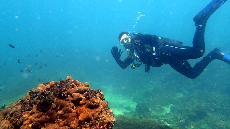 adventures in pakistan - scuba diving, trekking, mountain climbing, parasailing, snorkeling