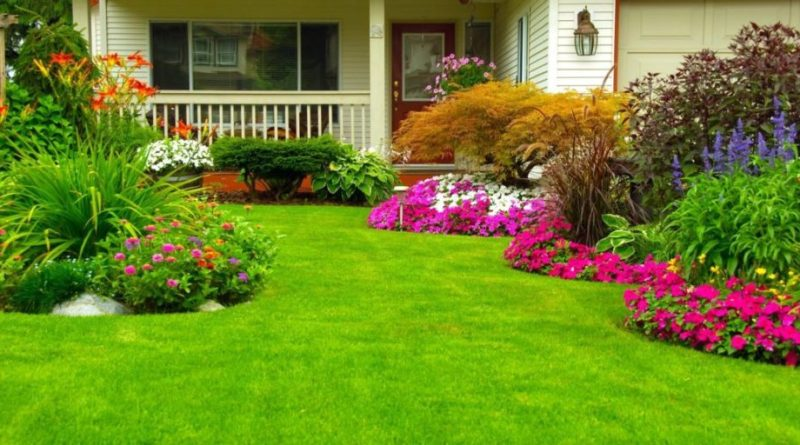 Questions to Ask Before Hiring Landscaping Services