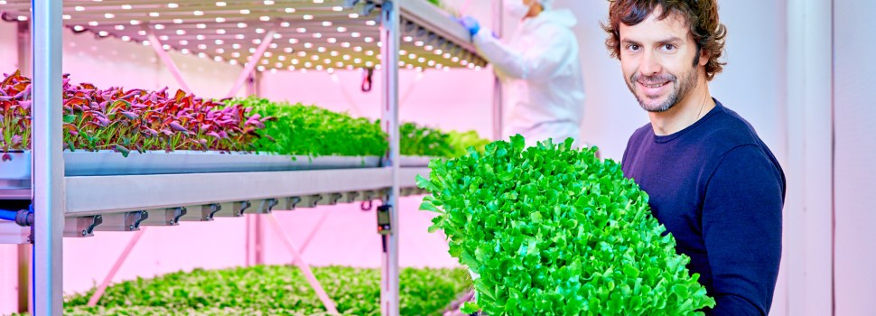 Signify Expands Collaboration For Largest Vertical Farming Facility