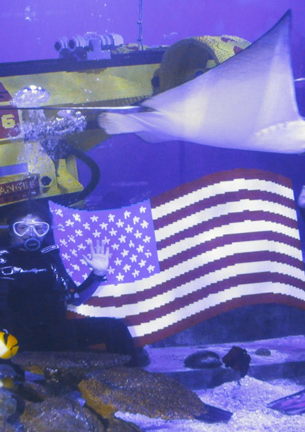 LegoLand California SEA LIFE® AQUARIUM takes Independence Day Celebration to New Depths.