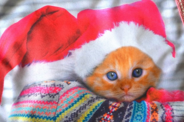idee regalo per Natale last minute