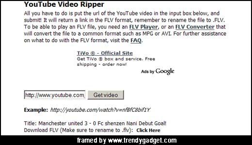 Ripzor YouTube Video Ripper