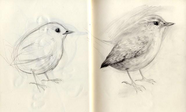 Oiseau 1 Chloe Giordano