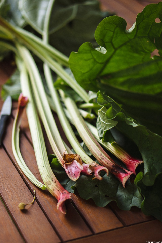 Tarte à la rhubarbe-3