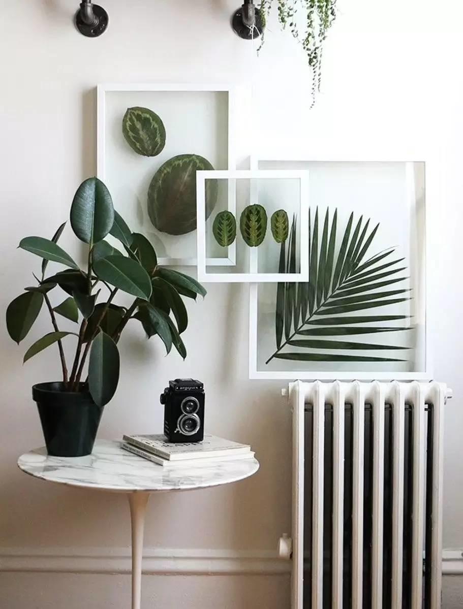 Décoration d'intérieur avec des plantes - Affiches fleuries