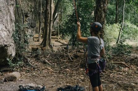 Site d'escalade à Thakek - Chèvres - Laos