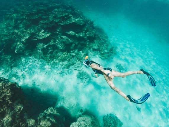 Snorkeling Ile Maurice - Rodrigues