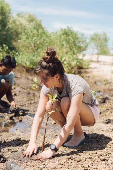 Pur Projet - Avène Eau Thermale - Plantation mangrove