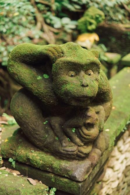Forêt des singes - Ubud - Bali-10