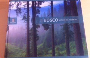 «Il bosco anima del Trentino», o come spendere male 50 mila euro