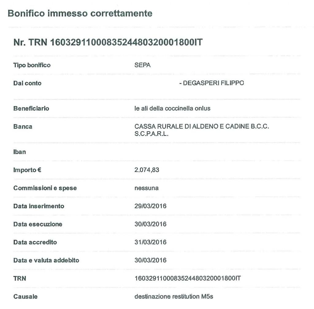 bonifico_le_ali_della_coccinella