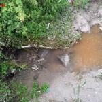 Mantenimento e pulizia della Fossa Granda di Darzo – Int.3812/XV