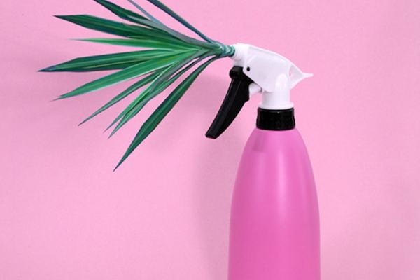 Plant-Cleaner-Vanessa-McKeown-Tres-Bohemes