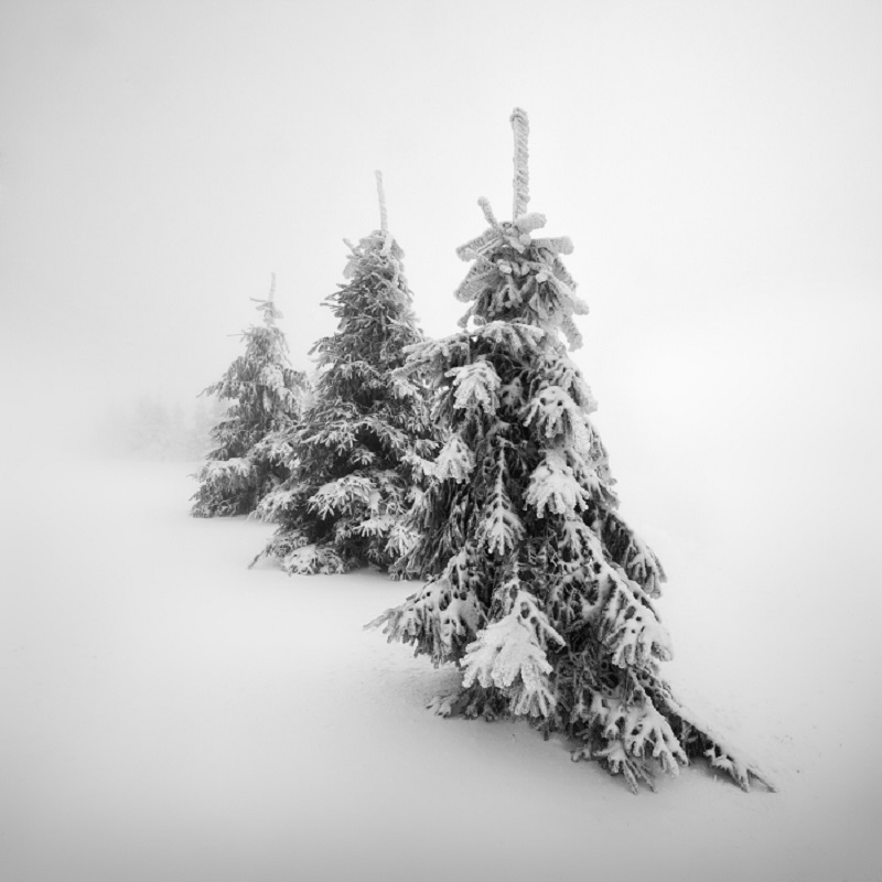 Daniel_Řeřicha-Winter_Wonderland_04