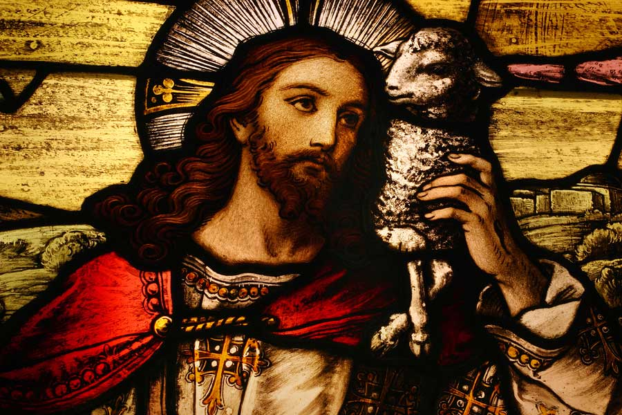Risultati immagini per jesus good shepherd window