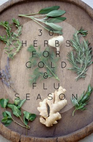 30 Herbs for Cold and Flu Season