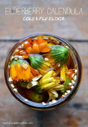 Elderberry Calendula Cold & Flue Elixir
