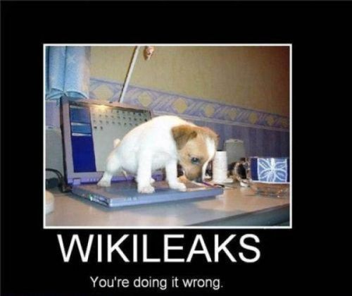 wikileakswrong