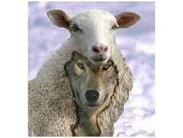 """Beware of the false prophets, who come to you in sheep's clothing, but inwardly are ravenous wolves."" Matthew 7:15"