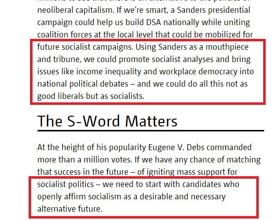 Dustin Guastella DSA Bernie is a socialist