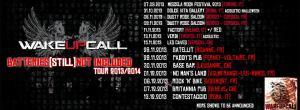 WakeupCall-Frence-2013