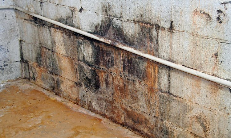 causes of water seepage and basement leaks