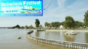 schwimmfestival