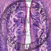 Taste Bud Prepared Microscope Slide