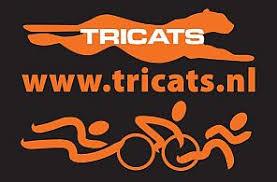 Tricats Image