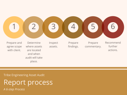 Asset condition audit process