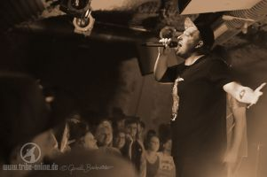 Antilopen Gang Jazzhaus 2015 - yDSC07133 - Tribe Online Magazin