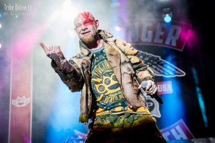 Five FInger Death Punch and Papa Roach_2015_29Adrian Sailer