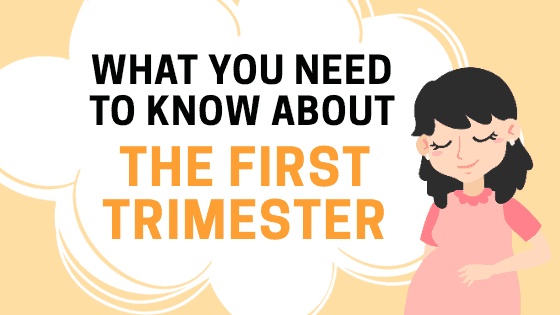 What You Need To Know About Your First Trimester of Pregnancy