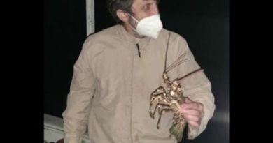 Operação combate pesca ilegal em Búzios