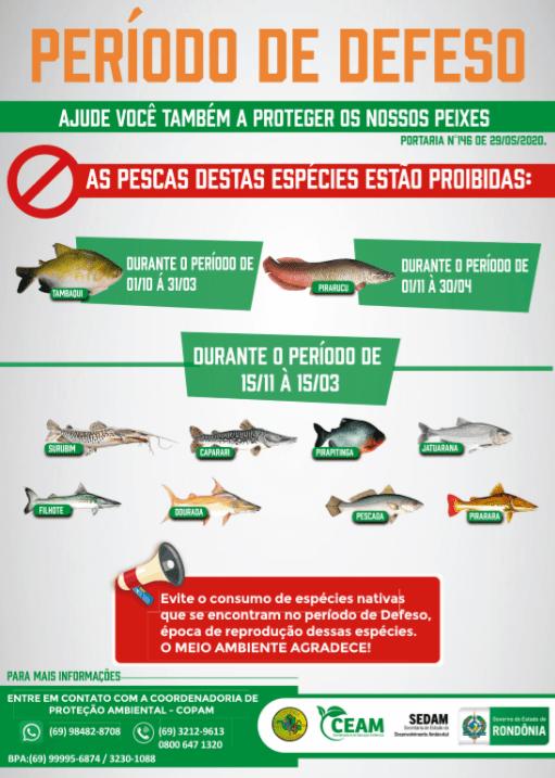 Período do defeso está em vigor em todo o Estado; pesca é proibida até março de 2021