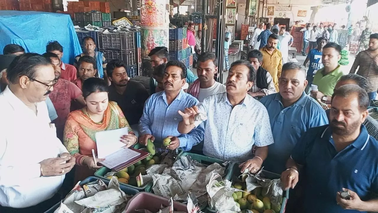 TWO QUINTALS OF UNNATURALLY RIPENED MANGOES DESTROYED UNDER 'TANDARUST PUNJAB' MISSION