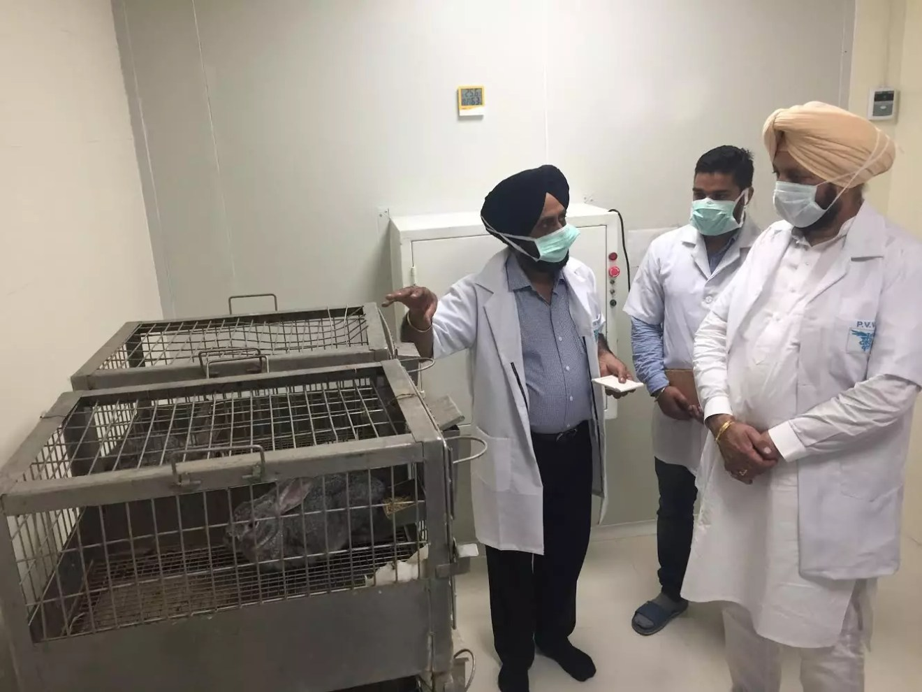 PUNJAB VETERINARY VACCINE INSTITUTE DEVELOPS VACCINE TO PROTECT PIGS FROM SWINE FEVER