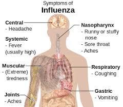 ADVISORY: SEASONAL INFLUENZA H1N1 (SWINE FLU)