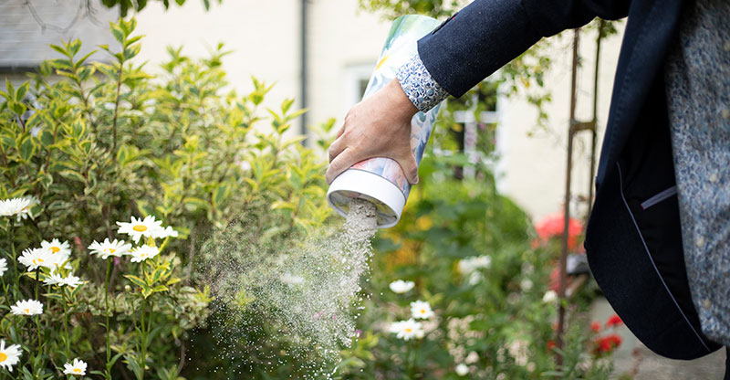 Can I scatter ashes in a garden? Our article explores the options for scattering or keeping ashes in your garden.