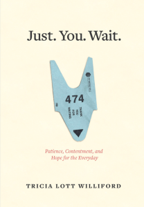 Just-You-Wait-COVER