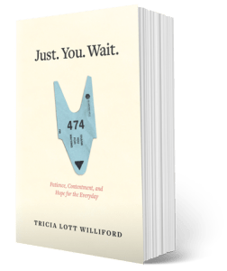 just-you-wait-paperback-cover