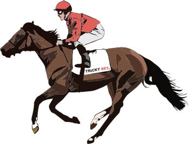 Horse Racing - How to pick a Winner! – TrickyBet