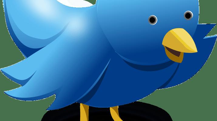 Twitter Tips