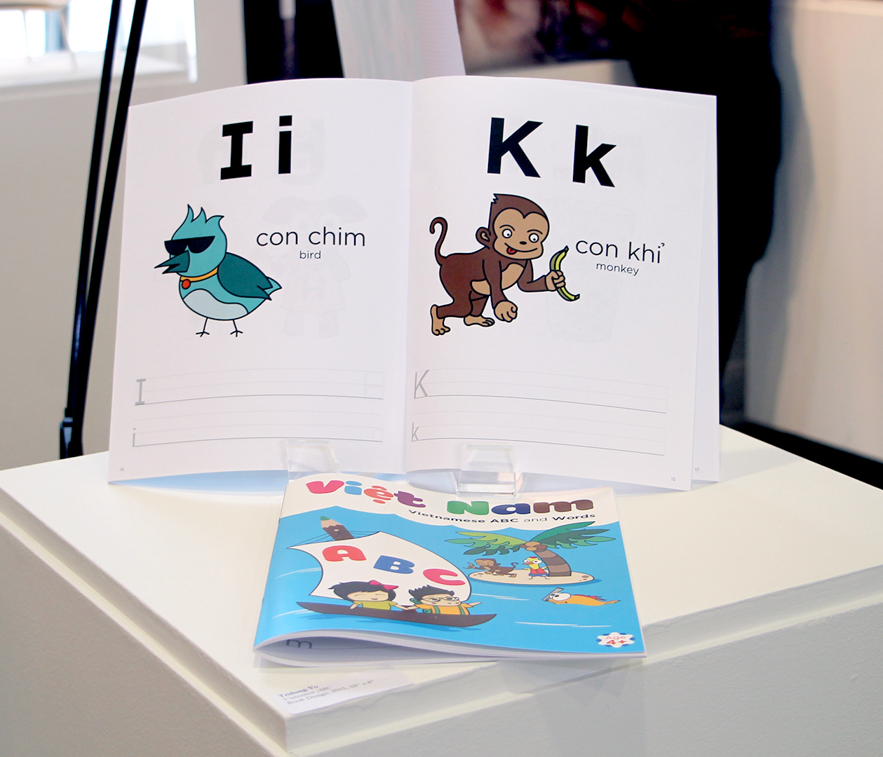 Open Book Vietnamese Alphabet Project