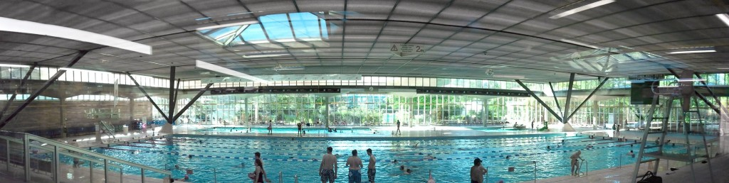 Retour sur le stage de natation de février 2016