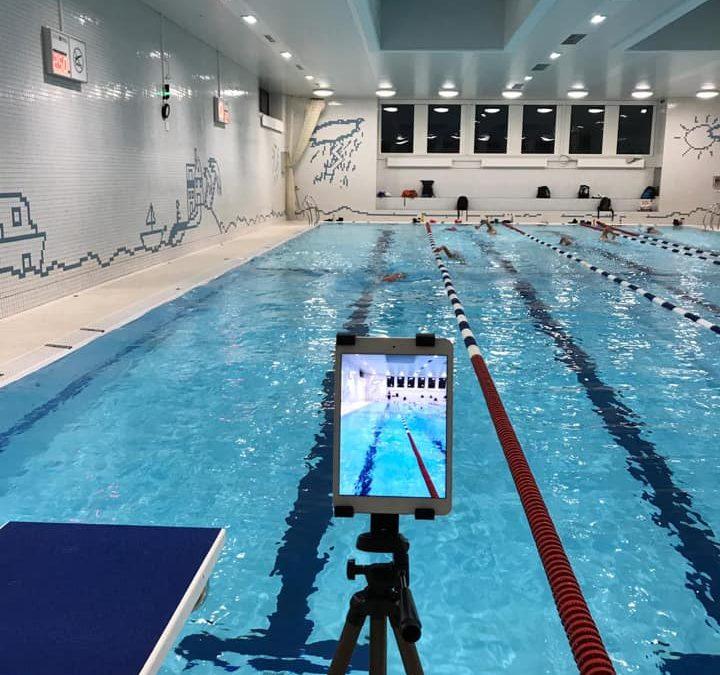 Stage de natation: points de vue d'un membre et d'un coach