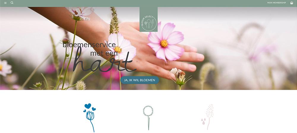 Webdesign bloom select
