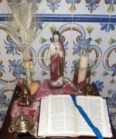 borriquita 5