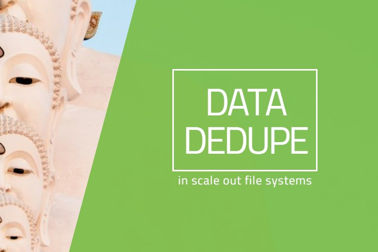 Data Deduplication in Scale Out File Systems